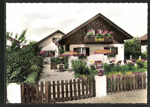 AK Schwangau / Allgäu, Hotel-Pension Knust 0