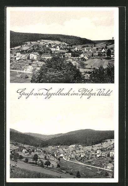 AK Iggelbach / Pfälzer Wald, Totalansicht