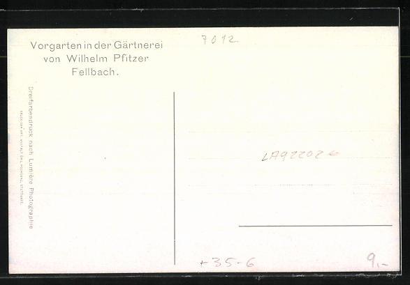 AK Fellbach, Vorgarten der Gärtnerei von Wilhelm Pfitzer 1