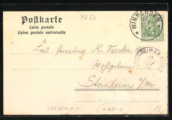 AK Nellmersbach, Blick auf Bahnhof, Gasthaus von F. Weishaar und Dorfpartie 1