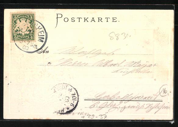Passepartout-Lithographie Pappenheim, Ortsansicht aus der Vogelschau, Wappen 1