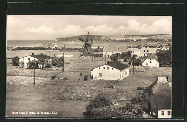 AK Vitte /Hiddensee, Ortsansicht mit Windmühle 0
