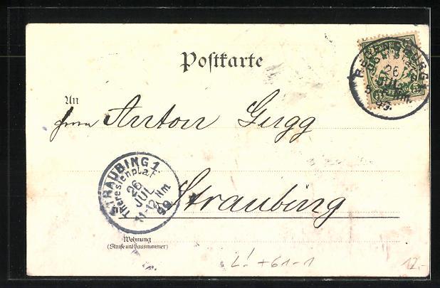Lithographie Regensburg, Landkarte der Umgebung 1