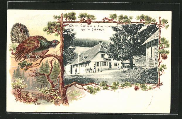 Passepartout-Lithographie Sirnitz, Gasthaus z. Auerhahn 0