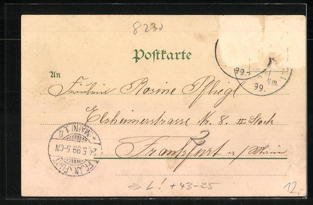 Lithographie Bad Reichenhall, Grundungsfeier der Liedertafel 1899, Panorama 1