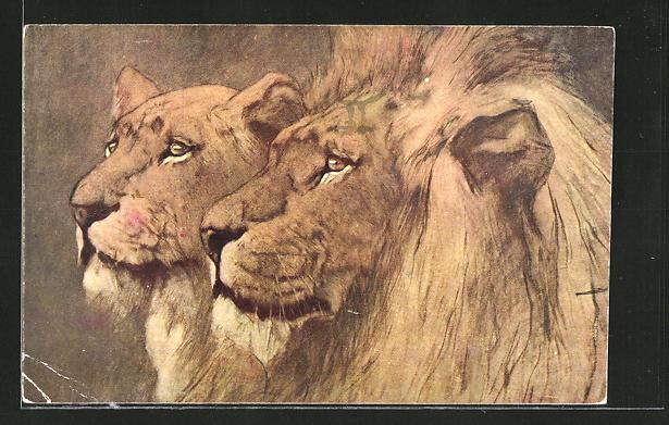 Künstler-AK Löwe und Löwin