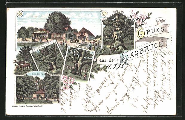 Lithographie Hasbruch, Gasthof zur Falkenburg, Jagdhütte, Dicke Eiche