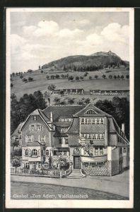 AK Waldkatzenbach, Ansicht vom Gasthof