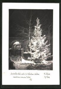 Foto-AK Adalbert Defner: Frohe Weihnachten! Tannenbaum im Winter
