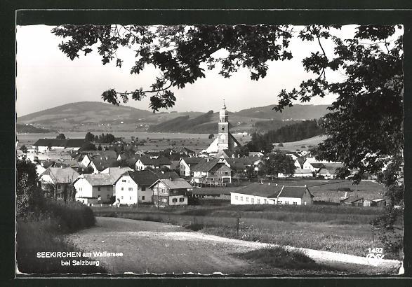 AK Seekirchen am Wallersee, Ortsansicht mit Blick ins Land