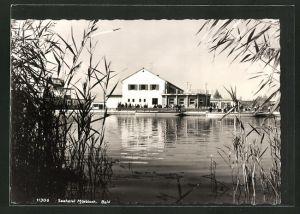 AK Mörbisch am See, Seehotel Mörbisch vom Wasser aus gesehen