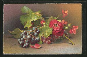 Künstler-AK Clara von Sivers: Trauben und Blumen