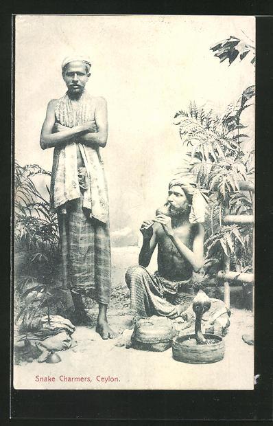 AK Ceylon, Snake Charmers, singhalesische Schlangenbeschwörer