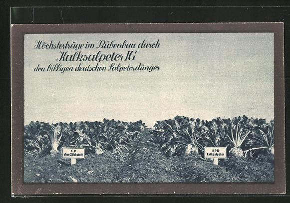 AK Kalksalpeter IG, der billige deutsche Salpeterdünger