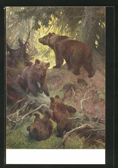 AK Bären spielen im Wald