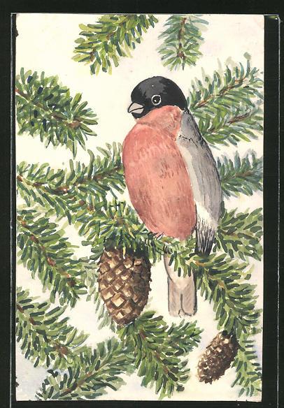 Künstler-AK Handgemalt: Singvogel auf einem Tannenzweig, Maler J. Walter, Halle a. S.