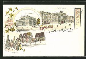 Lithographie Braunschweig, Residenzschloss, Theater, Burgplatz, Weberstrasse & Andreaskirche