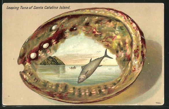 Präge-Passepartout-AK Santa Catalina Island, CA, Leaping Tuna, Muschel-Rahmung