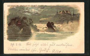 Lithographie Rheinfall, Wo erscheint die Nixe? Suchbild