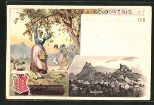 Lithographie Sion, Panorama, Reklame Suchard, Frauen pflücken Äpfel, Wappen