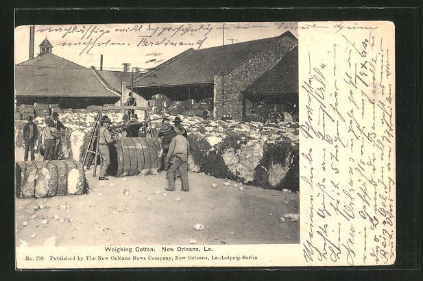 AK New Orleans, LA, Weighing Cotton, Landwirtschaft