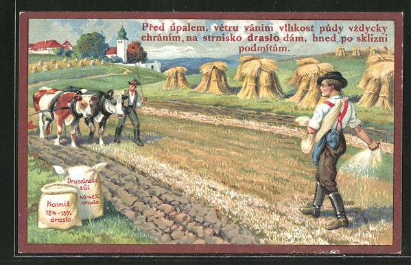 AK Dünger-Reklame, Bauern mit Rindergespann