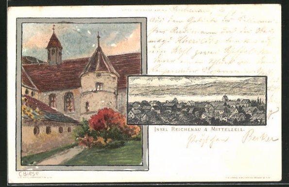 Künstler-AK Carl Biese: Insel Reichenau, Panorama mit Mittelzell