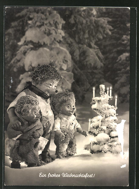 AK Meckis im schneebedecktem Garten am Weihnachtsbaum