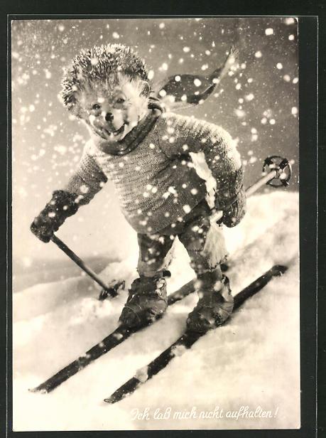 AK Mecki fährt im Schneesturm Ski
