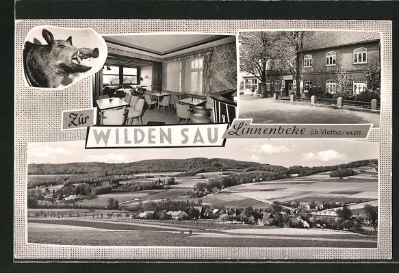 AK Linnenbeke / Westf., Gaststätte zur wilden Sau, Ortspanorama