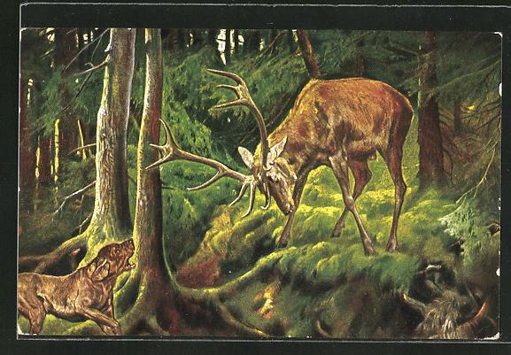 AK Hirsch verteidigt sich vor dem Jagdhund