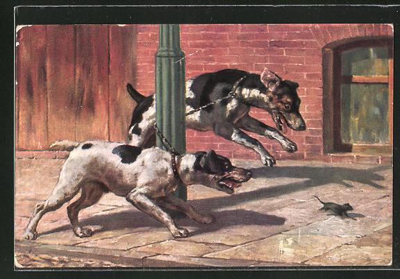 AK Terrier jagen Maus, Scherz