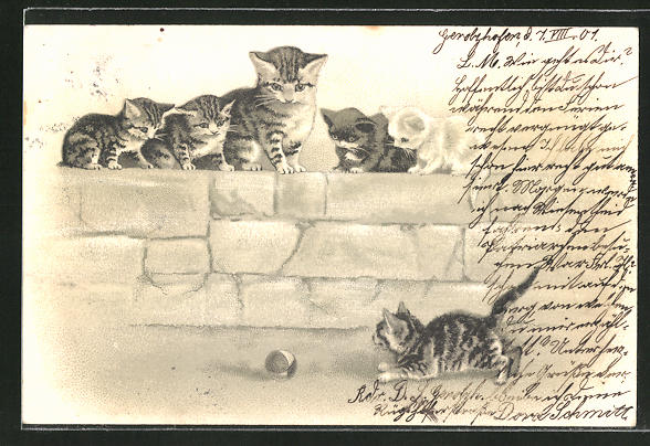 Präge-Lithographie Neugierige Katze mit Jungen mit Ball