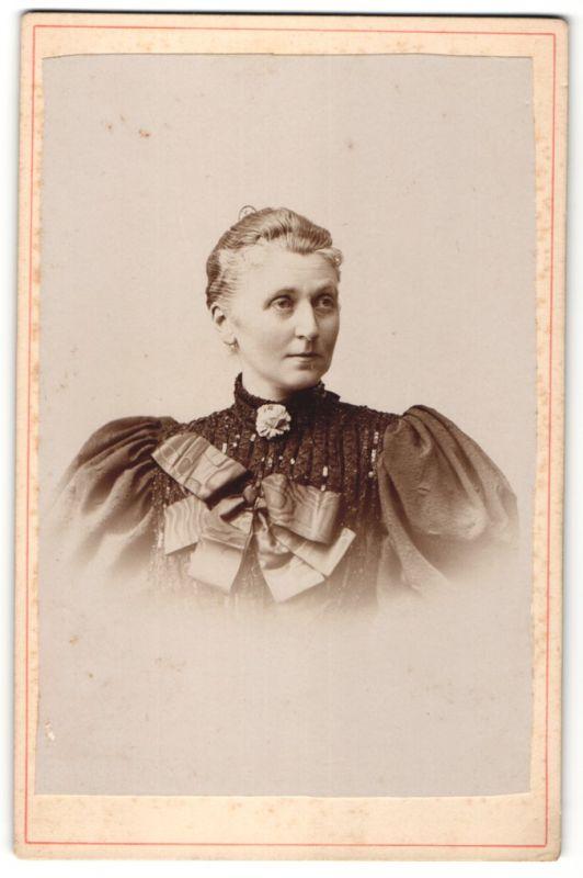 Fotografie Portrait Edeldame vornehm gekleidet im modischen Kleid