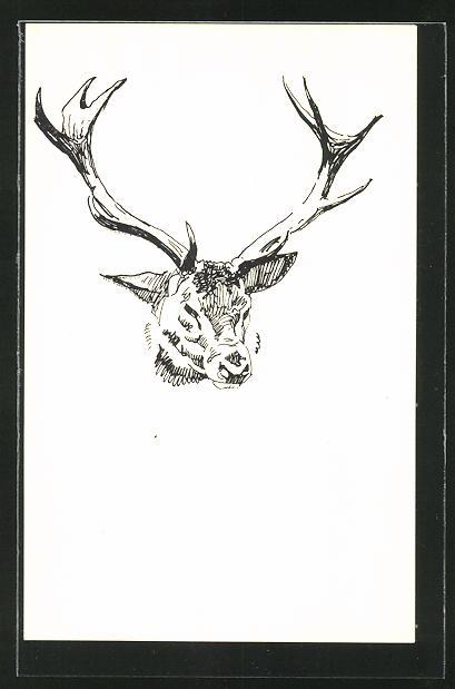 Künstler-AK Ludwig Hohlwein unsigniert: Studie eines Hirsches