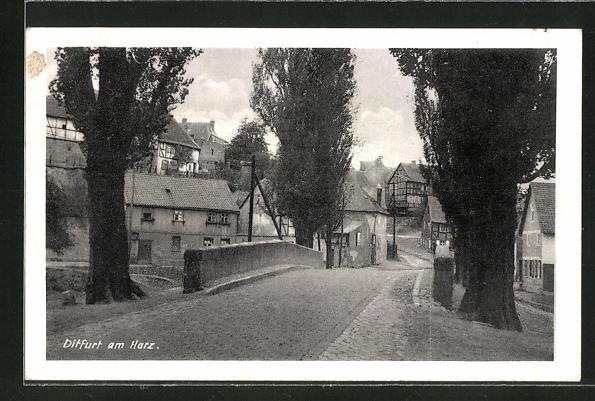AK Ditfurt a. Harz, Ortspartie mit Strasse und Häusern