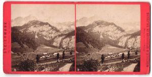 Stereo-Fotografie Würthle & Sohn, Salzburg, Ansicht Hochthor vom Johnsbach
