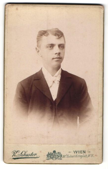 Fotografie K. Schuster, Wien, Portrait junger Herr mit Seitenscheitel im Anzug mit Fliege