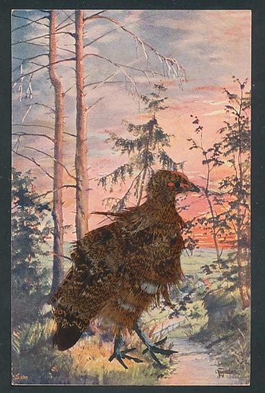 AK Rebhuhn aus echten Federn an einem Waldbach