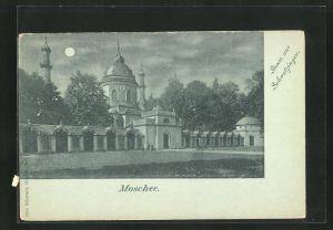 Mondschein-AK Schwetzingen, Blick zur Moschee