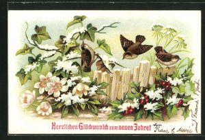 AK Neujahr, Vögel auf verschneiten Christrosen, Efeu und der gewöhnlichen Stechpalme