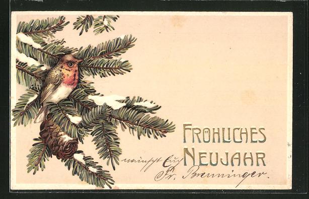 Präge-AK Fröhliches Neujahr! Vogel auf einem Tannenzweig