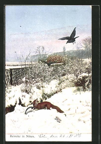 AK Reineke in Nöten, Fuchs in der Falle