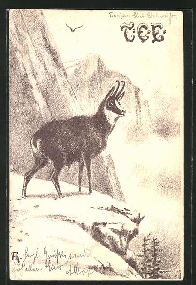 Künstler-AK Gemse an der Felsklippe in den Bergen