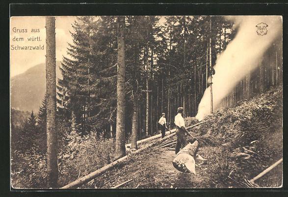 AK Forstwirtschaft im württ. Schwarzwald