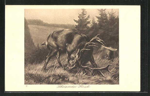 Künstler-AK Scherzender Hirsch auf einer Lichtung
