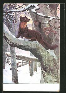 Künstler-AK Marder klettert auf einem verschneiten Baum herum