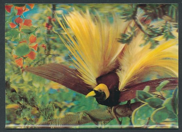 3D-AK Paradiesvogel im gelben Federkleid