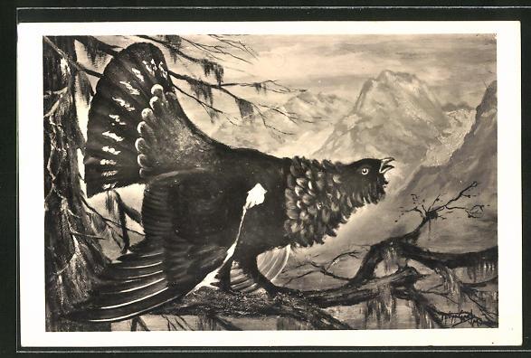 Künstler-AK balzender Hahn auf einem Baum