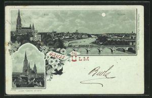 Mondschein-Lithographie Ulm, Totalansicht mit Neuulm, Münster